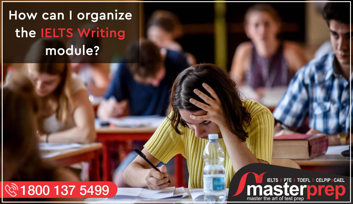 How can I Organize the IELTS Writing Module?